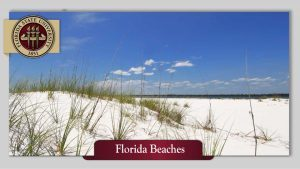florida-beaches